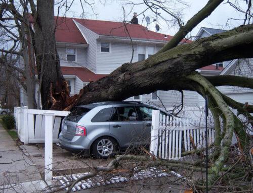 Preparing Your Property for Hurricane Season