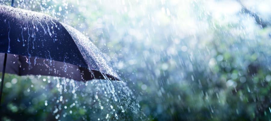 muller-umbrella-insurance