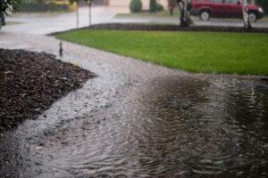 Flooded Yard