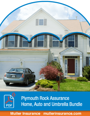 The Plymouth Rock Total Package