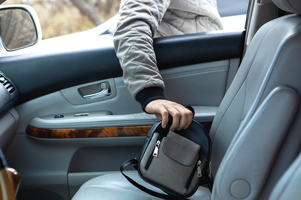 Person stealing handbag from open car window